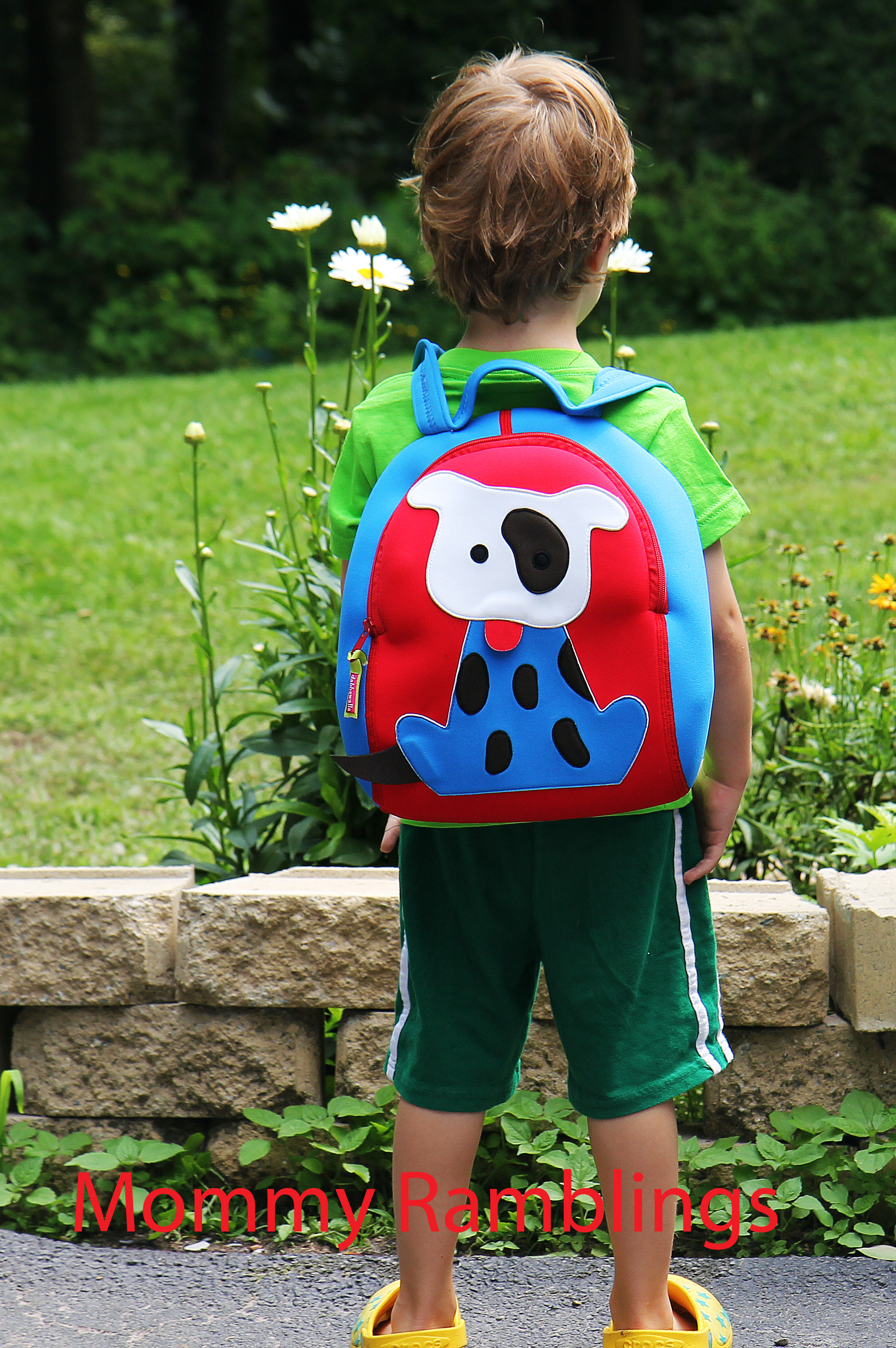 dabbawalla go fetch back pack review  discount code • mommy  - dabbawalla go fetch back pack review  discount code • mommy ramblings