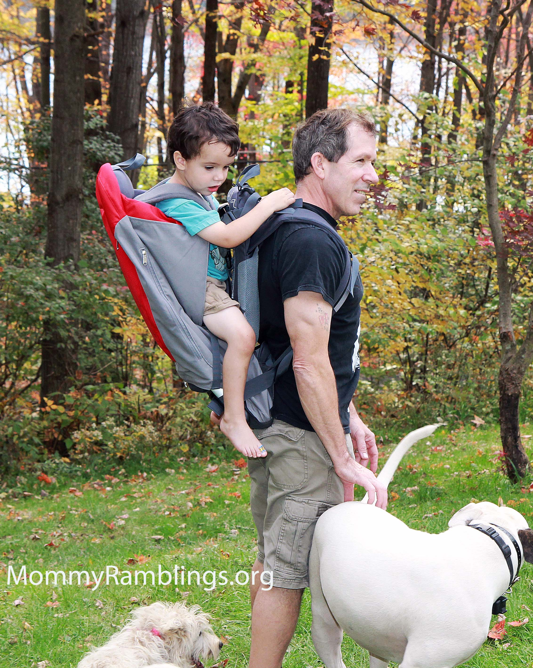 1158e4897f0 Phil And Teds Baby Backpack Carrier